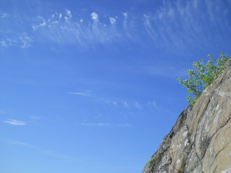 Cloudias painting